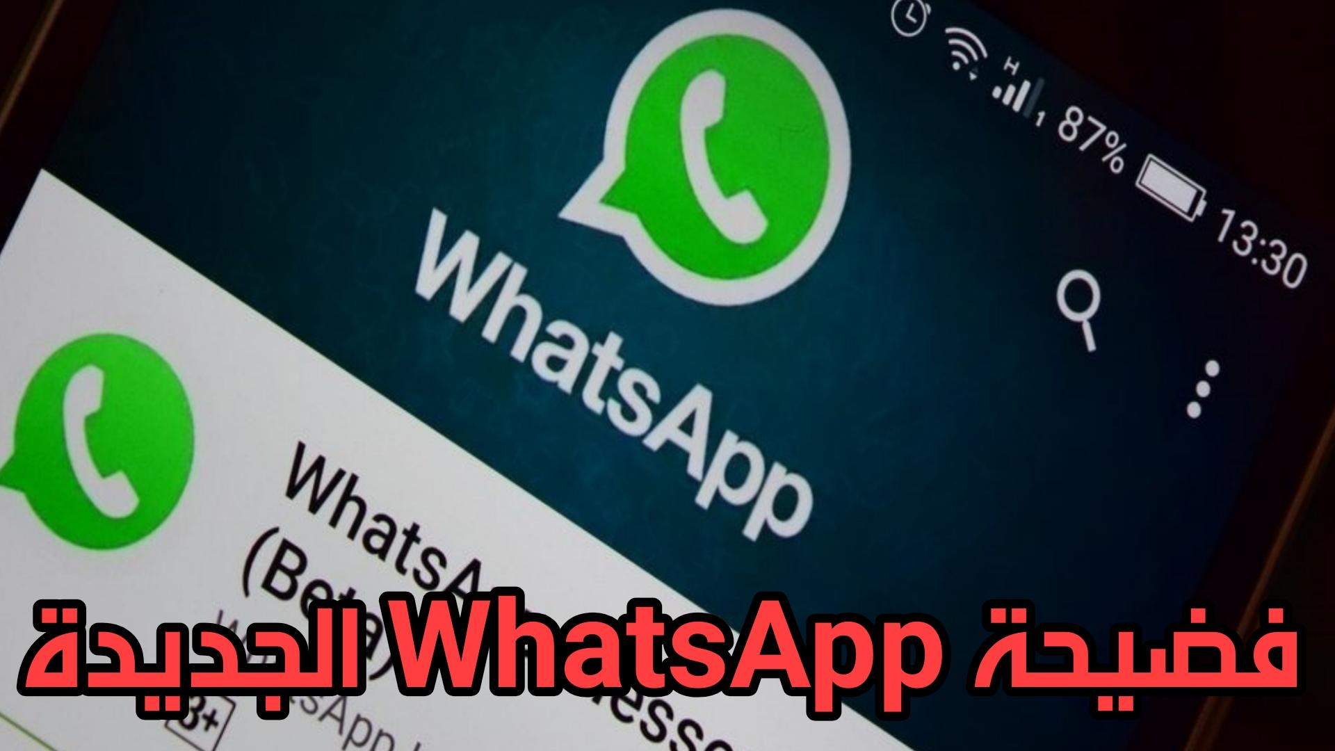 ثغرة جديدة في Whats App تسمح بالتجسس على الهاتف عن طريق مقطع فيديو MP4فقط !!!